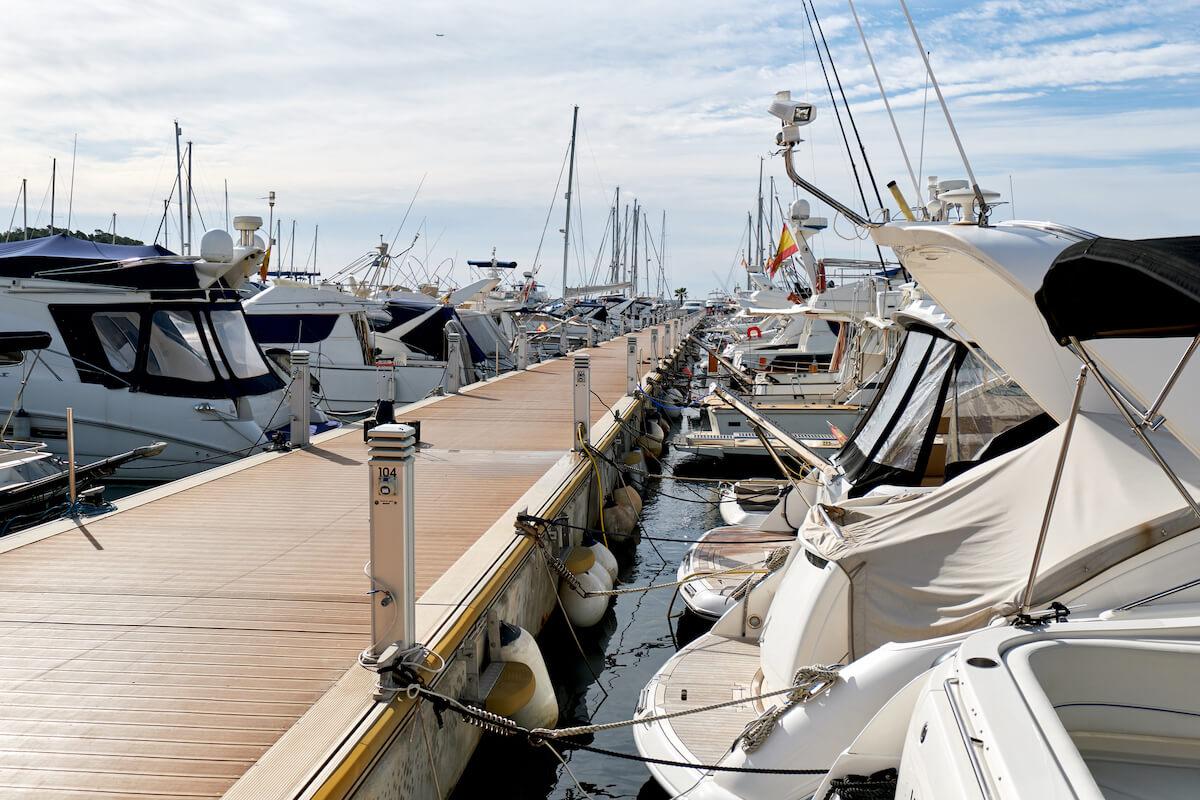 docked boats in a marina